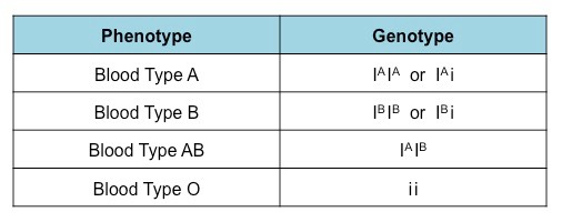 Abo Blood Type Chart Genotype - The Chart