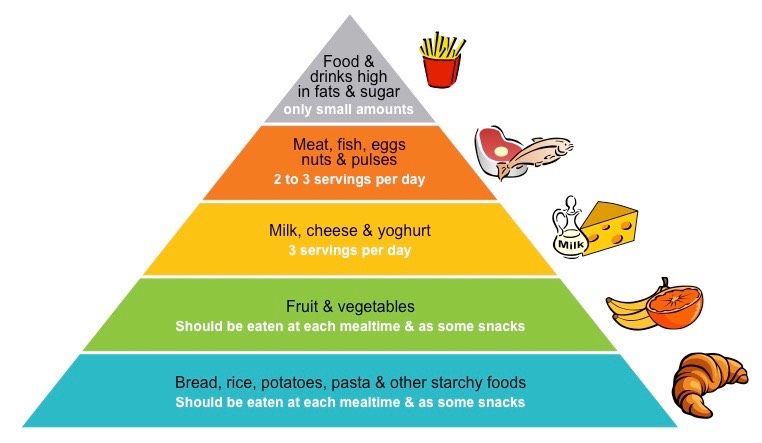 the importance of the food pyramid