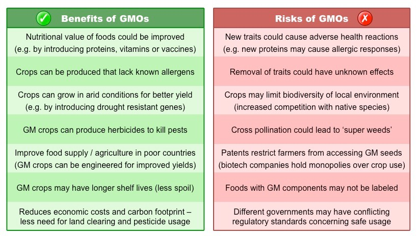 the risks of genetically modified foods The truth about genetically modified food proponents of genetically modified crops say the technology is the only way to feed a warming, increasingly populous world critics say we tamper with.
