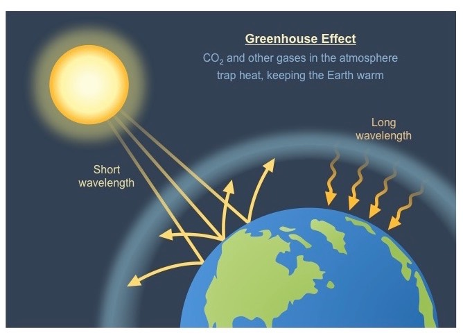 Greenhouse effect bioninja for Green housse effect