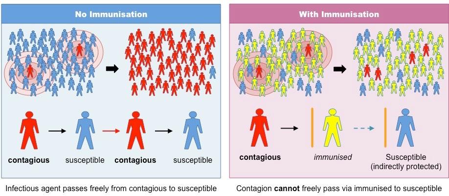 Vaccination | BioNinja