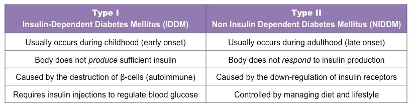 Insulin And Glucagon Bioninja