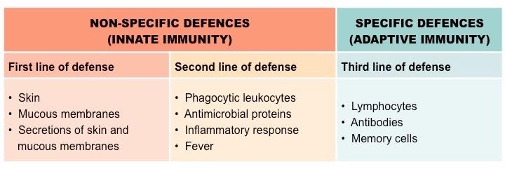 Lines Of Defense Bioninja