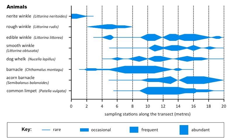 Species distribution bioninja ccuart Image collections