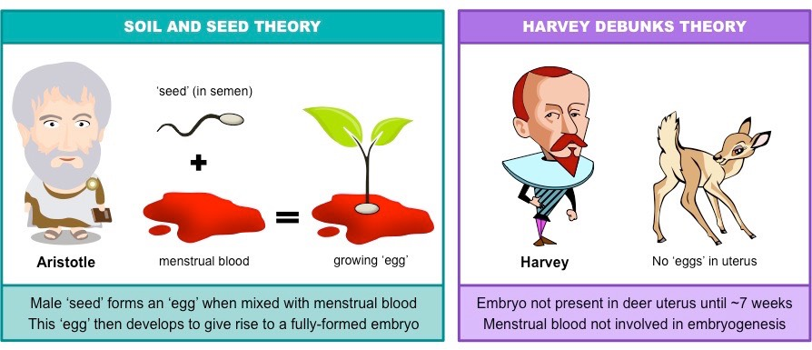 soil and seed theory