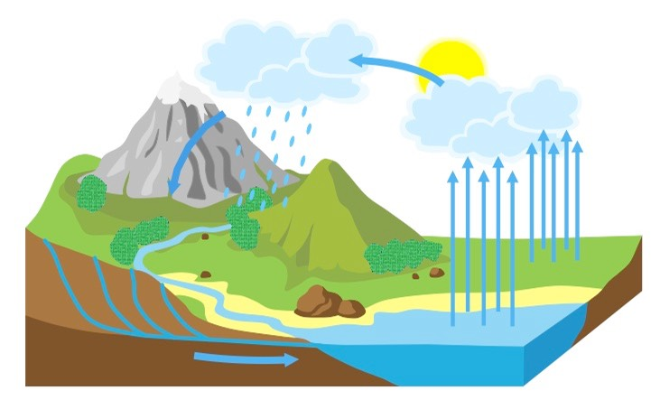 Water Cycle Med